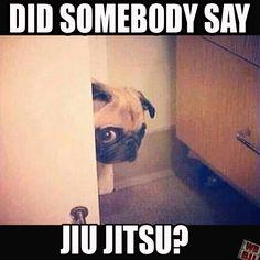 Did somebody say #JiuJitsu? #BJJ #BJJmeme #BJJmemes