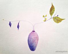 Desenho, lápis de cor / Drawing,  watercolor pencil by Adriana Galindo