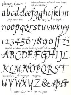 1000 Images About Calligraphy Italic Chancery Cursive
