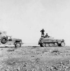 DAK Sdkfz 251