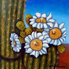 """ Saguaro Blossoms V"", original art by Chris Demma 12 x 12""  oil      Available at the Fountain Hills Artists Gallery"