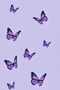 Lavender Wall Collage Kit