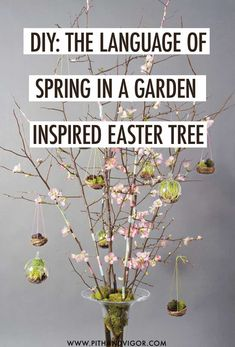 The old Germanic tradition of the Easter tree has made its way into modern American custom. These trees have not …