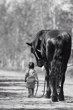 Shows that children have no fear, and horses are one of the great friends and…