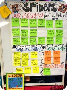 Spider Week: Spider Anchor Charts, Books, Crafts, and ideas