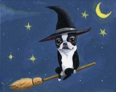 Boston Terrier Witch on a Broom  Dog art print by rubenacker, $18.00