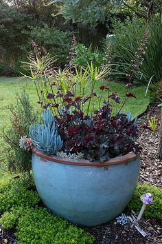 Garden Container . Soothing colors