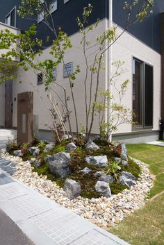 芝生のあるお庭 ◇お庭の実例 - 福山市の外構、エクステリア、庭のデザインと施工なら。ロケーションのある暮らしを。そらやLandscape Plant Design, Garden Design, Japanese Plants, North Garden, Japan Landscape, Drought Tolerant Landscape, Mountain Resort, Garden Planning, Garden Plants