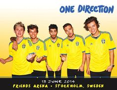 One Direction 2014 Tour