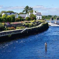 Visit Galway (@visitgalway) • Instagram photos and videos Days Like This, Salmon, River, Photo And Video, City, Videos, Outdoor Decor, Photos, Instagram