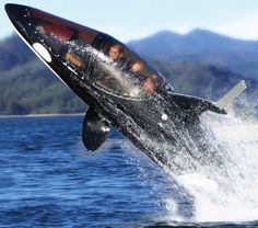 Personal Killer Whale Submarine... Seabreacher Y not only looks like a 17-foot killer whale, it acts like one too. But this is one killer whale you'd like to be sitting inside. It's powerful enough to hydroplane along the surface at 50mph and zip along underwater at 25mph. I hope it plays the theme song from Jaws.