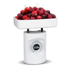 Food Scale - Health & Fitness Accessories - Promotional Groups | Bulu Box