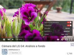 Lee El nuevo reproductor transparente de YouTube ya funciona de forma predeterminada