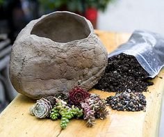 This Large Garden Stone Kit from Simply Succulents is so popular that it seems to be temporarily out of stock. But I'm going to keep checking back, because the kit is extremely affordable, and it would add such an unusual touch to an indoor space. Or be the perfect centerpiece for an outdoor table!