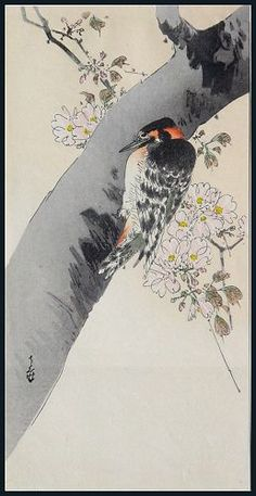 "Yoshimoto GESSO (1881-1936). Great Spotted Woodpecker (Aka-gera) and cherry tree; 9½"" x 5."" Signed ""Gesso."""