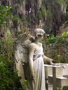 Angel in Bonaventure cemetery, Savannah GA
