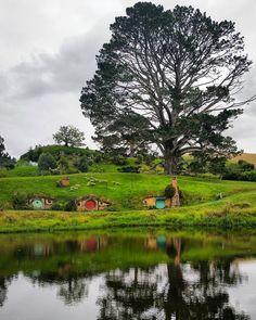 Bom dia pra você que gostaria de ter acordado em Hobbiton na Nova Zelândia. Por enquanto o espaço é apenas para visitação mas imagina se tivesse hospedagem. Quem não ia querer dormir lá? #NerdsNaNZ