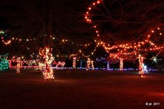 Irvine Park Lights in Chippewa Falls, WI - Photo by jst via tumblr