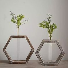Whitewashed Geometric Bud Vases, Set of 2 from Kirkland's Lady Lake, Grove City, Bossier City, Holly Springs, Johnson City, Table Top Display, Bud Vases, Home Accents, Floor Vases