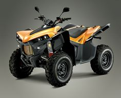 Cectek's KingCobra ATV. Great for kicking around the island on a warm summer day at Put-in-Bay.