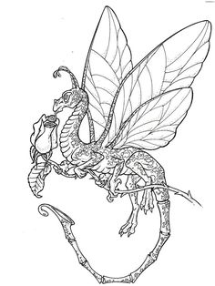 coloring pages licious dragon coloring pages for adults free coloring pages of dragons for adults