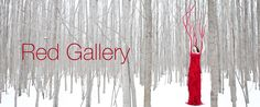 Red Gallery