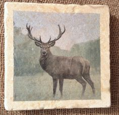 Natural stone Trivet Pot Stand in STAG design by ENCOREHOMEgift £18.00 : encore stone tableware - pezcame.com
