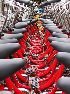 Repetition, symmetry, basic colors...what is there not to love about this photo? I get lost in the seats and bars.