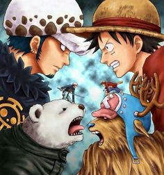 Law vs Luffy