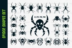 A set of spider shapes in different styles: natural, cute cartoon, spider skull design and tribal tattoo style. Format: Vector Ai, Eps, PSD + Transparent PNG.