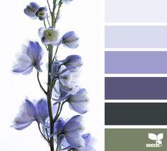 flora hues, by design seeds Colour Pallette, Color Palate, Colour Schemes, Color Combos, Color Patterns, Color Harmony, Design Seeds, Colour Board, Color Theory