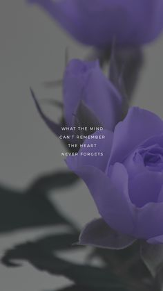 New wallpaper iphone quotes inspiration words heart Ideas Iphone Wallpaper Quotes Love, Quotes Lockscreen, Sad Wallpaper, Wallpaper Bible, Trendy Wallpaper, Phone Wallpapers, Mood Quotes, Positive Quotes, Life Quotes