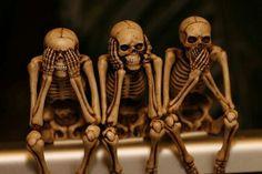 Skulls calaveras