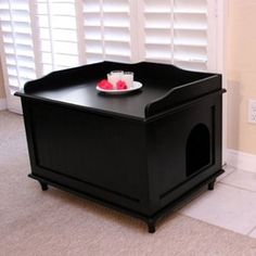 This is a great idea for hiding the kitty liter box. Gotta get me a couple of these.