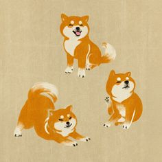 shibe paradise (by Illustration Art Drawing, Japanese Illustration, Illustrations, Animal Sketches, Animal Drawings, Cute Drawings, Shiba Inu, Chibi Dog, Cute Animal Pictures
