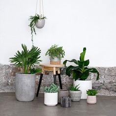Hängender Keramik-Blumentopf als Design-Objekt, mit Holzperlen verziert #urbanjungle