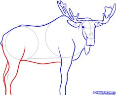 how to draw a moose step 7