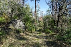 9000 Old Liberty Trail, Placerville, CA 95667 - MLS 16010812 - Coldwell Banker