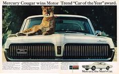 Motor Trend's Car of the Year, 1967 Mercury Cougar ad.