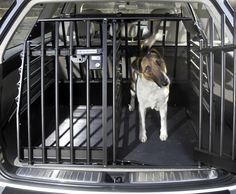 A Safer Way To Travel With Your Dogs: Variocage  ... see more at InventorSpot.com