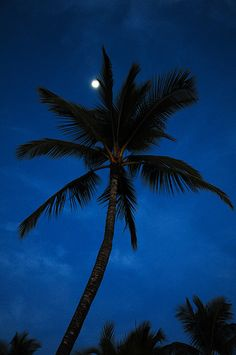 'Moon Shadows' Hawaii