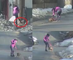 Woman Takes Dog Jogging And Repeatedly Hits And Abuses The Terrified Pit Bull! Demand Punishment!
