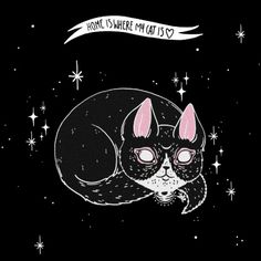 Home is where my Cat is Art Print by LOll3