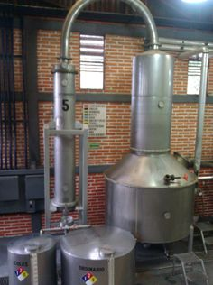 Tequila distillery in Tequila, Mexico.  Step 4: Distillation