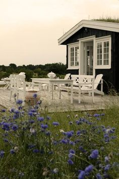 Danish summer cottage
