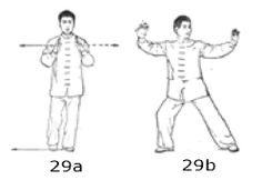 Sun Taijiquan, International Standard Competition 73 Movements Form:  Instructions, Lists, Notes, Bibliography, Links Instructions, Qigong, Wing Chun, Tai Chi, Excercise, Martial Arts, Benefit, Competition, David