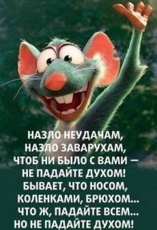 scontent-amt2-1.xx.fbcdn.net Hr Humor, Sarcasm Humor, Funny Phrases, Funny Quotes, Life Quotes, Cute Emo Girls, Russian Quotes, Different Quotes, Smiles And Laughs