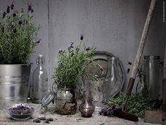 Vykort från Provence | Livet Hemma – IKEA