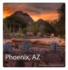 Revived Downtown, Native American Cultural Sights, Wide Open Spaces and A Taste of the West, Photo Credit: Greater Phoenix CVB