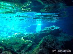 Jumping into the refreshing waters of the cenotes at the Riviera Maya.  #tourguidekay #privatetours #kaytours #cenotes #rivieramaya #playadelcarmen #tulum #cancun #mexico #traveltips